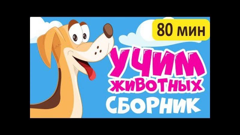 2017 БОЛЬШОЙ СБОРНИК! Учим животных - все серии! развивающие мультики для детей на русском