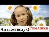 Страна читающая ПолинаЛепилина читает произведение Ромашка (Александрова Зинаида)