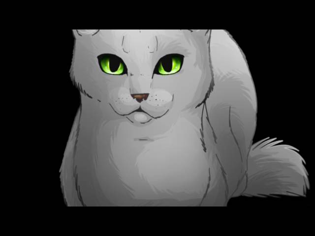 Top 10 Most Annoying Warrior Cats REASONS IN DESCRIPTION