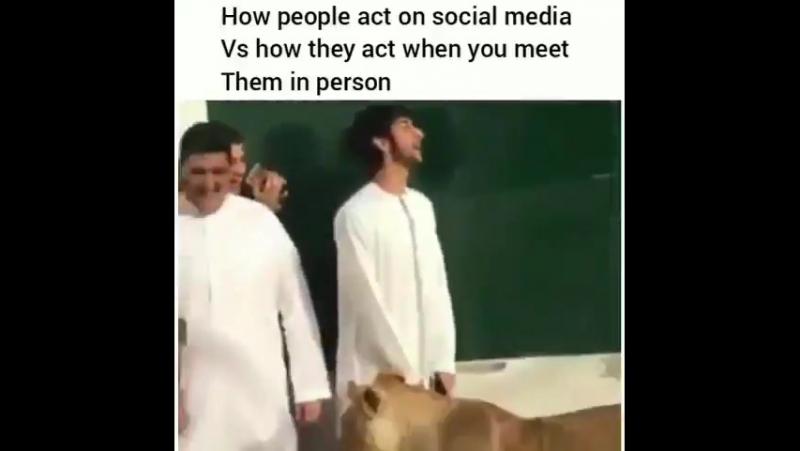 мусульманин в зверинце