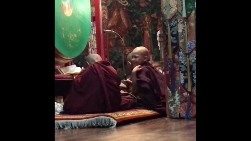 5 years old monks Пятилетние монахи Когда тебе 5 лет непросто быть монахом Хочется постучать не в ритуальный барабан а по