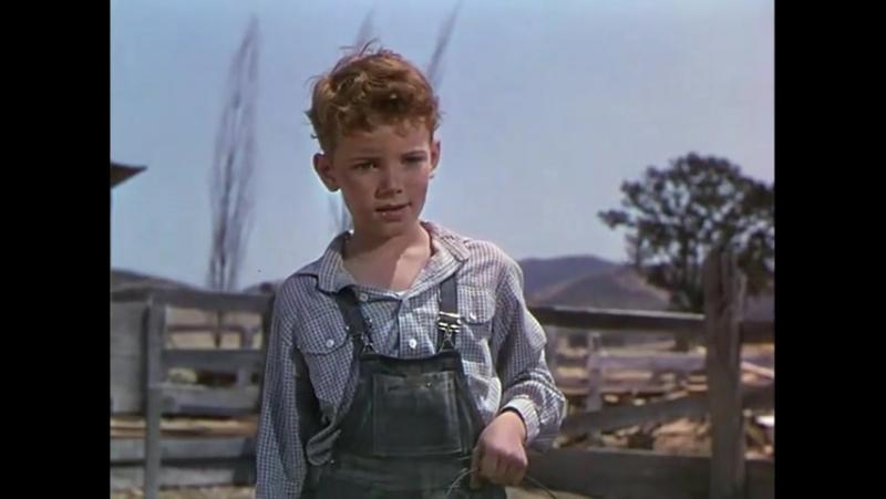 ◄The Red Pony(1949)Рыжий пони*реж.Льюис Майлстоун