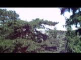 Ботанический сад Клуж-Напока