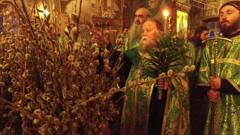 Вербное воскресенье в Оптиной пустыни 2017