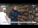 На Рыбинском водохранилище заработала этнодеревня Тыгыдым