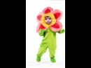Мой цветочек любимый