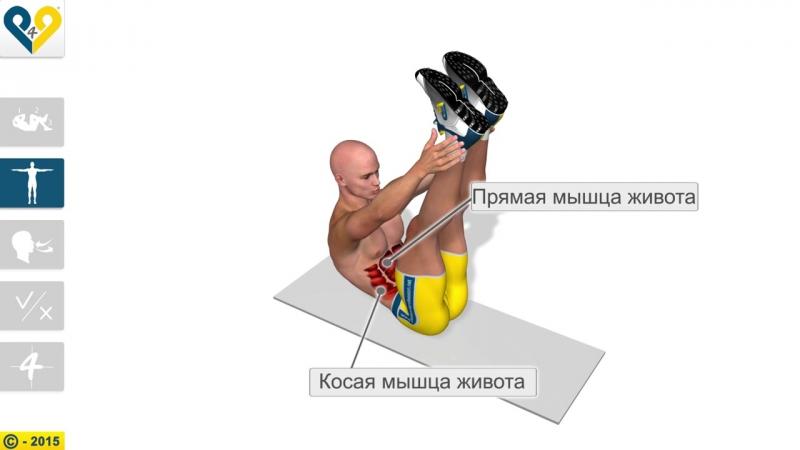 Скручивание с вертикальными ногами и прикосновением к лодыжкам