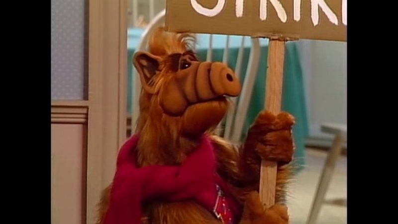 Alf Quote Season 1 Episode 13 Альф Про дом