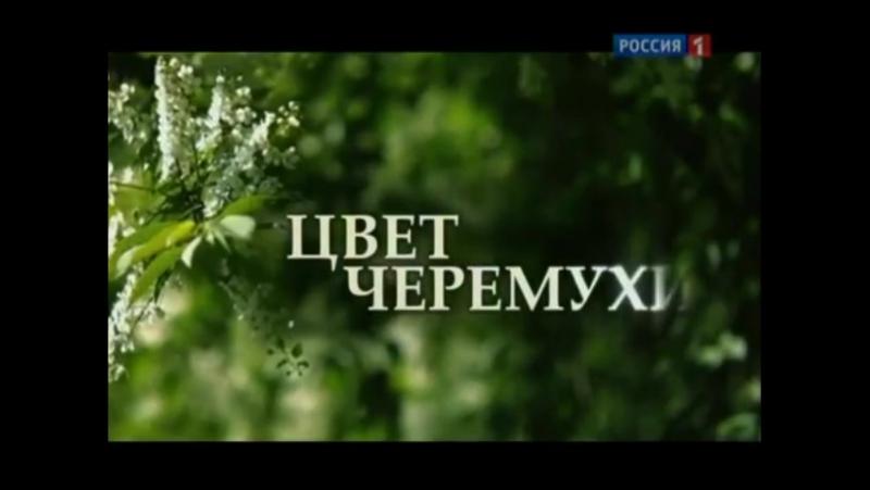 Заставка телесериала Цвет черёмухи Россия 1 2012