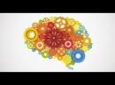 Вебинар Ольги Бутаковой Как мозг управляет нами