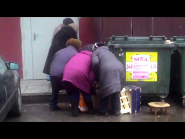 Пенсионеры роются в урне, Пятерочка, Тверь