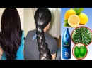How to Color Home Remedies For Hair Growth and Thickness Coconut Oil Amla Curry Leaves Natural COLOR