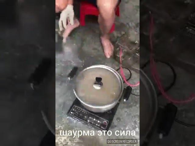 Шаурма из крыс