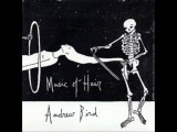Andrew Bird - Music Of Hair (FULL)