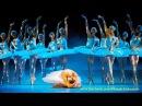 Лебединое озеро Балет Swan Lake ballet Чайковский цирковое шоу Шанхай