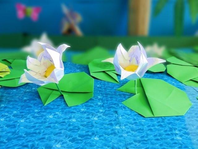 Origami Lotus Flower (Fold a beautiful paper Lotus)