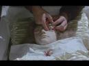 LANA DEL REY - FLIPSIDE (MUSIC VIDEO)