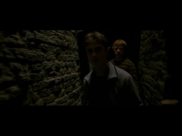 Гарри Поттер и Принц-полукровка.Гермиона,Рон и Гарри в косом переулке
