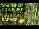 Рыбалка на поплавок.КРАСИВЫЕ ПОКЛЕВКИ ЛИНЯ,КАРАСЯ.