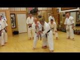 Taira Bunkai NJ 2013 - More Ashi Waza Bunkai (Sunday)