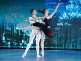 Большой балет. Анастасия Соболева Виктор Лебедев. Па-де-де Одиллии и принца Зигфрида из балета
