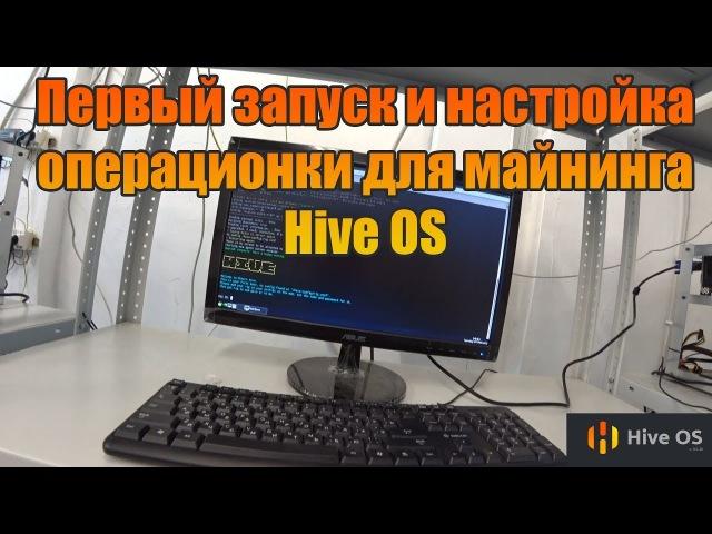 Первый Запуск и Настройка операционки для майнинга Hive OS   Ферма 1060 3gb   Хайв ОС