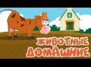 НОВЫЕ! ДОМАШНИЕ ЖИВОТНЫЕ для детей! развивающие мультики для самых маленьких! Учим слова на русском