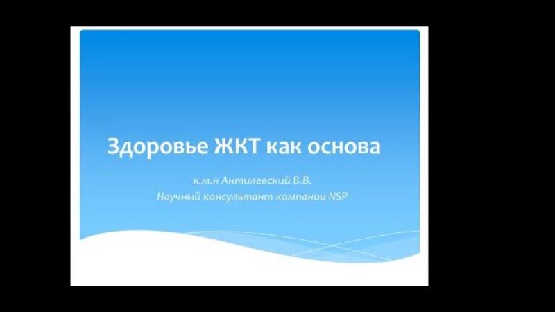 Реабилитация ЖКТ Основа здоровья Вебинар кмн Антилевского Вечеслава