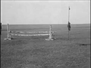 Белый Омск, 1919 год