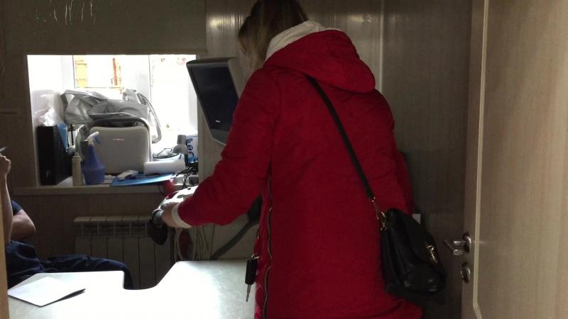 Отрывок с приема УЗИ в Ветеринарной Клинике Айболит в Самаре