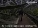 Огромная агава начала распускаться в Ботаническом саду
