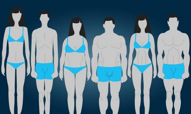 qW6VQUAf7Go Особенности тренировок для разного типа телосложения