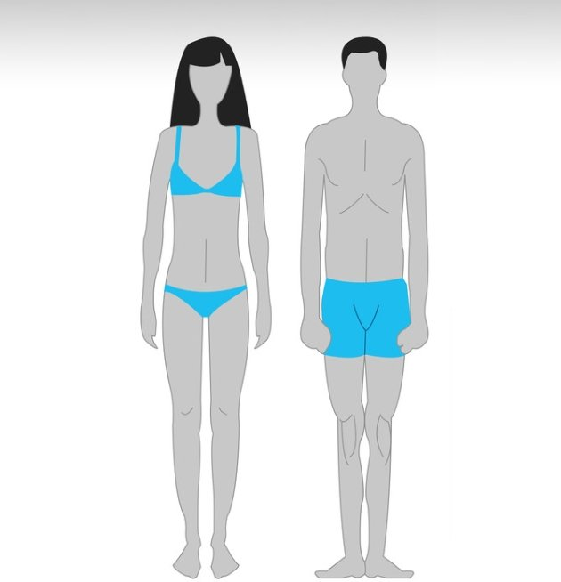 sWBodim47L8 Особенности тренировок для разного типа телосложения