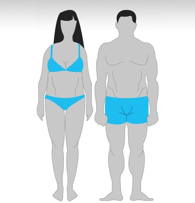 ZQK3RR lSco Особенности тренировок для разного типа телосложения