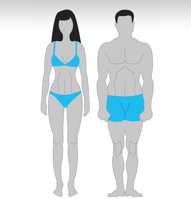 x95Xko9qMoY Особенности тренировок для разного типа телосложения