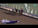 West Coast worked 6F for the Breeders Cup Classic in company with Hoppertunity