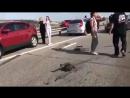 Ужасная авария сегодня произошла на Трассе м-4 Дон. Воронежская обл. Примерно 15 км от посёлка Лосево. У грузового авто отказали