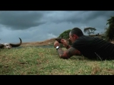 Ухххххх????как же крууутоооо?Дикая природа, фантастические пейзажи, красота и величие африканской саванны - вся мощь чёрного кон