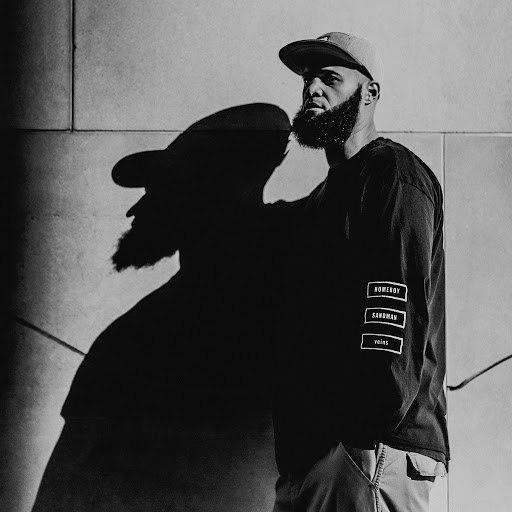 Homeboy Sandman альбом Veins