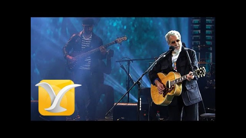 Yusuf Cat Stevens, Wild World, Festival de Viña 2015 HD 1080p