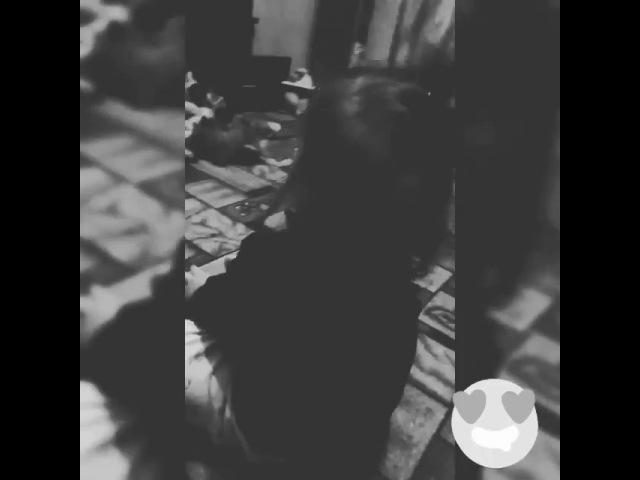 Shanelka_oyun video