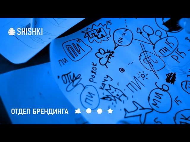 SHISHKI P15 case