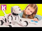 Интерактивная Собака Робот. Игрушки для детей. Robotic Dog for Kids