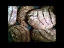 Хлеб. Выпечка ржаного бездрожжевого хлеба суфикс