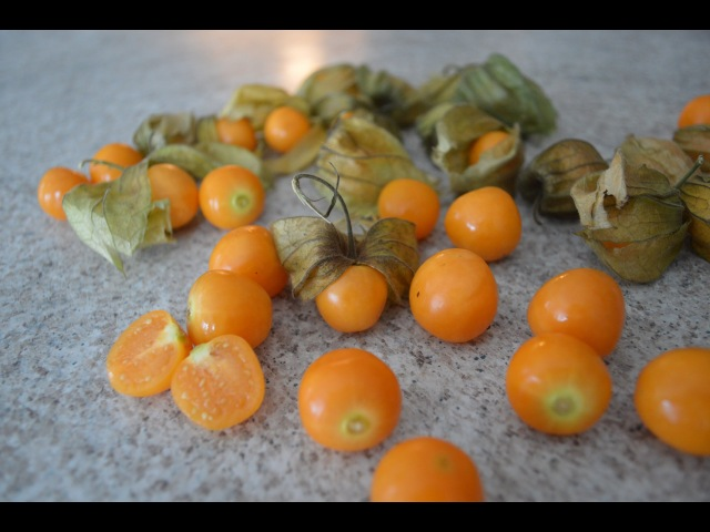 How to Prepare Eat Goldenberries - aka Peruvian Ground Cherries: Cooking with Kimberly