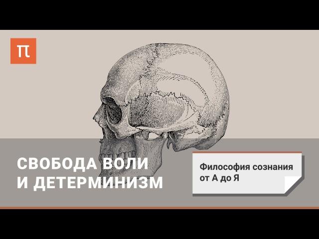 Философия сознания Свобода воли и детерминизм abkjcjabz cjpyfybz cdj,jlf djkb b ltnthvbybpv