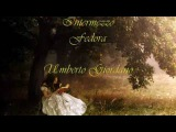 Intermezzo from Fedora.Giordano.(Wonderful music) Edited by Marino van Wakeren.