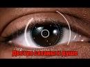 Демонское воздействие через биометрию радужной оболочки глаза