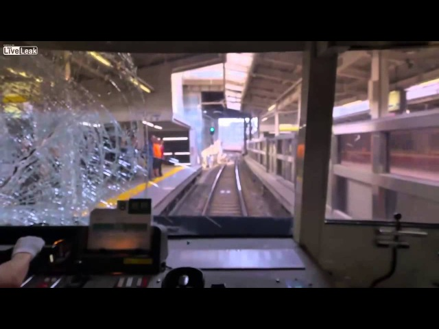 Suicide jumper hits train in Japan view from inside train