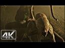 Ataque de NEOMORFO Campo de Trigo Alien Covenant 2017 LATINO 4k HD